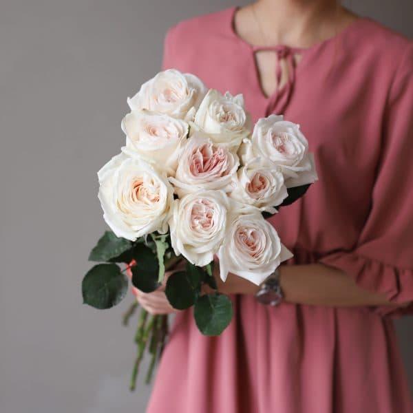 Монобукет из 9 пионовидных роз №1027 - Фото 1