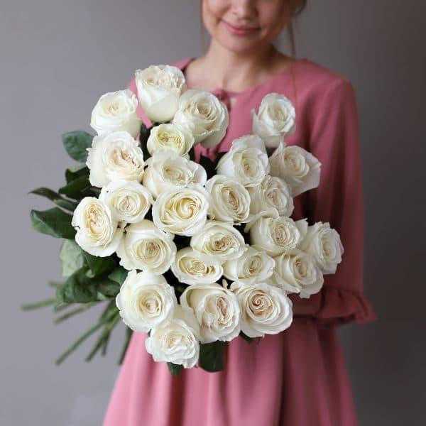 Монобукет из 25 роз (Эквадор) №1050 - Фото 37