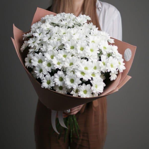 15 кустовых Ромашковых Хризантем в  оформлении №689 - Фото 1