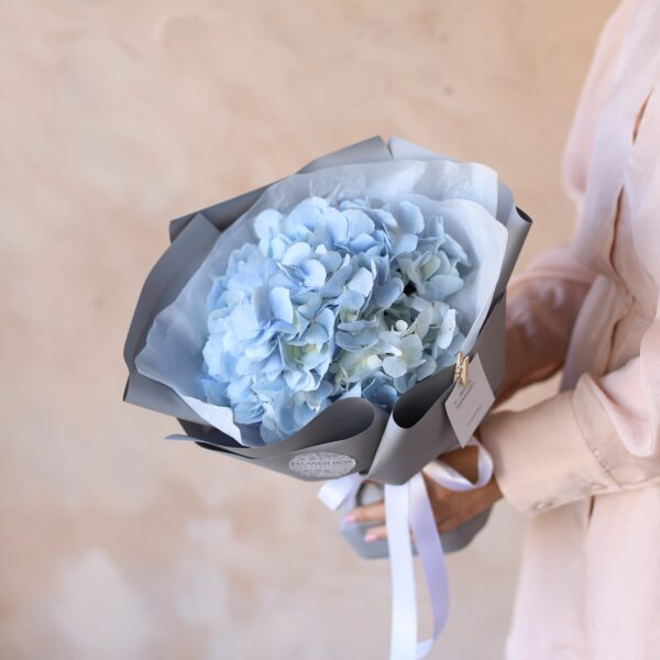 Голубая гортензия в упаковке №1160 - Фото 1