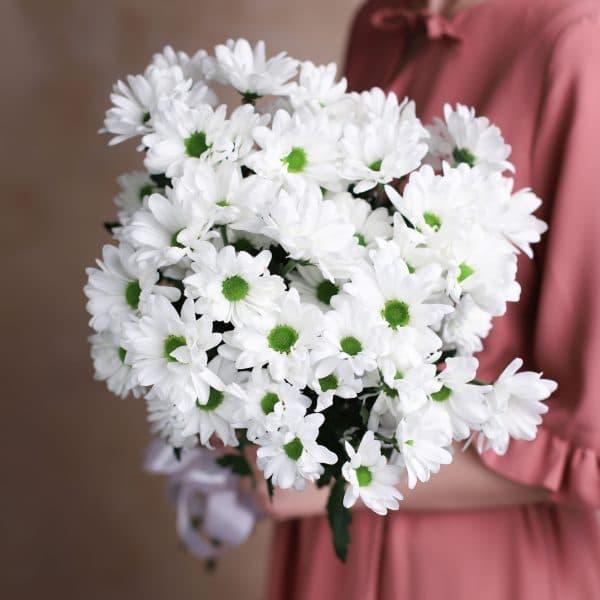 Букет комплимент из ромашковых Хризантем №1012 - Фото 2