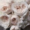 Классический букет с пионовидными розами №997 - Фото 4
