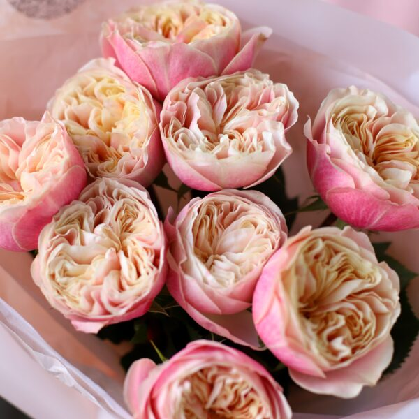 Премиум Розы Victor Classic №1132 - Фото 2