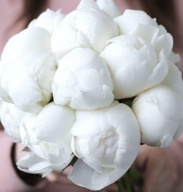 Свадебный букет из 15 пионов премиум качества №1126 - Фото 8